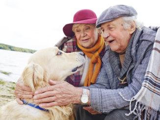 Senioren mit Hund