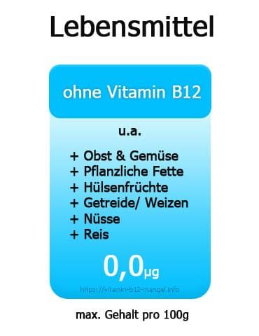 lebensmittel-ohne-vitamin-b12