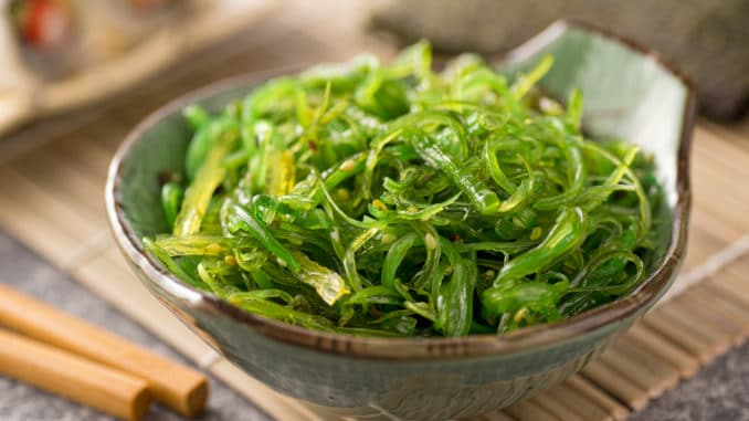 Salat aus Algen